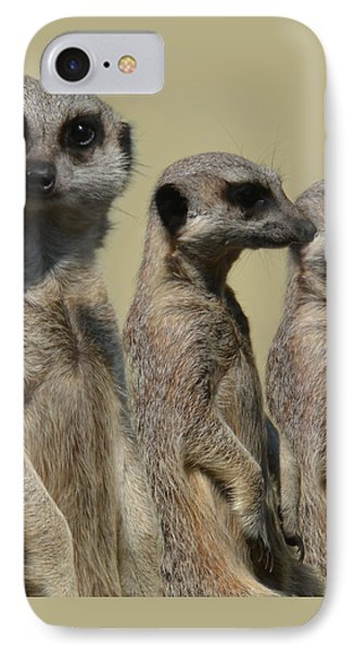 Line Dancing Meerkats IPhone Case by Paul Davenport