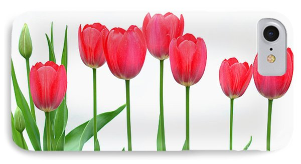IPhone Case featuring the photograph Line Of Tulips by Steve Augustin