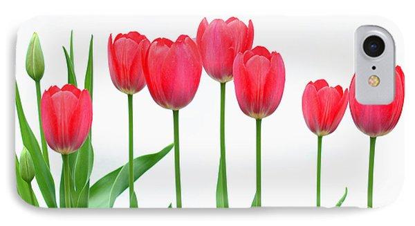 Line Of Tulips IPhone Case