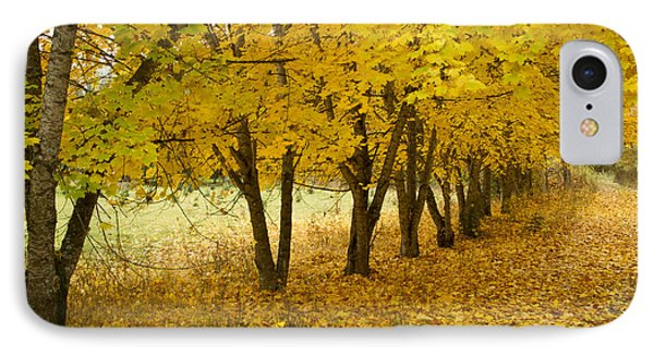 Lined With Gold IPhone Case by Idaho Scenic Images Linda Lantzy