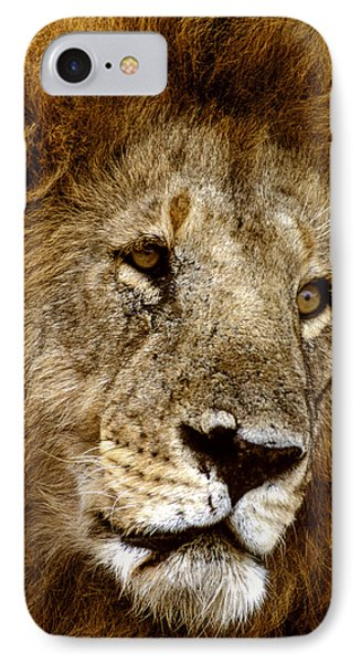 Lion 01 IPhone Case by Wally Hampton