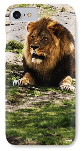 Lion At Rest IPhone Case by B Wayne Mullins