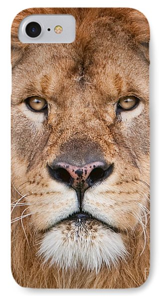 IPhone Case featuring the photograph Lion Close Up by Jerry Fornarotto