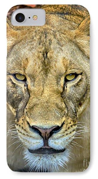 Lion Closeup IPhone Case by David Millenheft