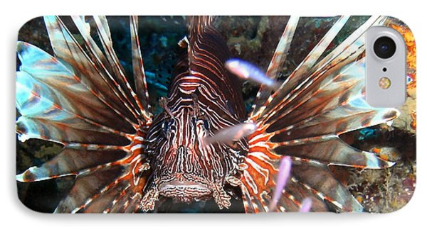 IPhone Case featuring the photograph Lion Fish - En Garde by Amy McDaniel