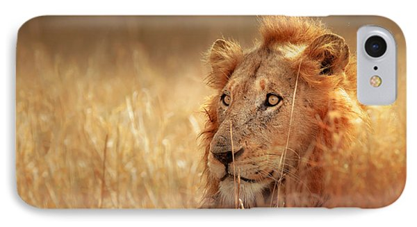 Lion In Grass Phone Case by Johan Swanepoel