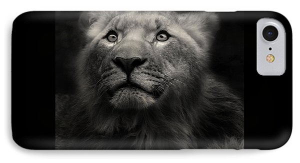 Lion In The Dark IPhone Case by Christine Sponchia