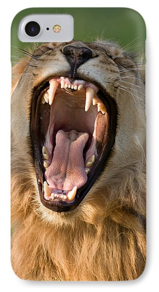 Lion IPhone Case by Johan Swanepoel