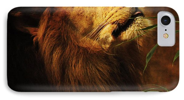 The Lion Of Judah IPhone Case by Olivia Hardwicke
