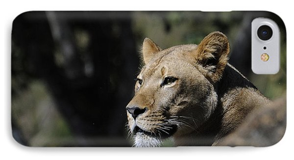 Lion Watching Phone Case by Keith Lovejoy
