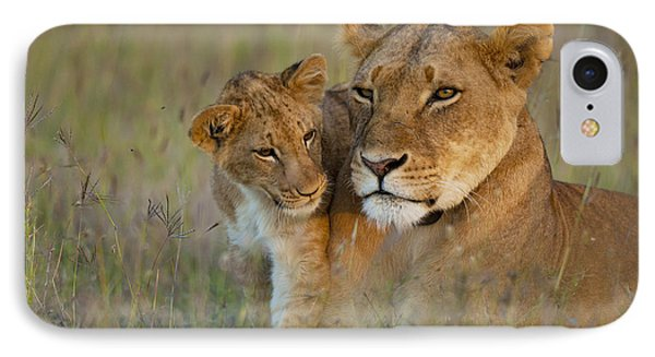 Lioness With Cub At Dusk In Ol Pejeta IPhone Case