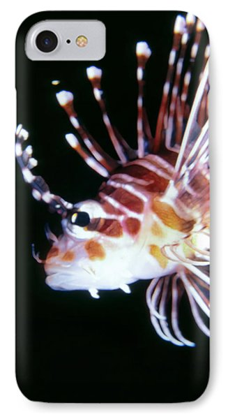 Lionfish 3 Phone Case by Dawn Eshelman