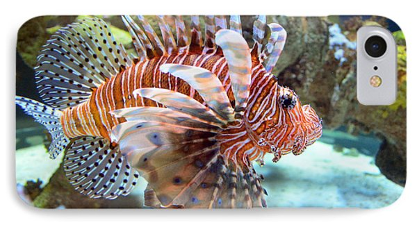 Lionfish IPhone Case by Sandi OReilly