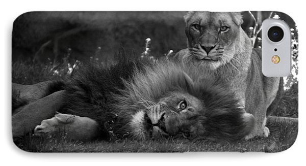 Lions Me And My Guy Phone Case by Thomas Woolworth