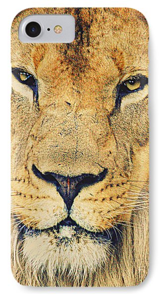 IPhone Case featuring the photograph Lion's Stare by Ruth Jolly