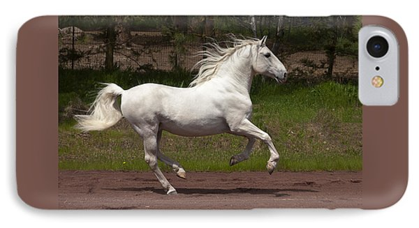 IPhone Case featuring the photograph Lipizzan At Liberty D5809 by Wes and Dotty Weber