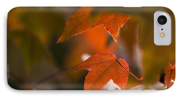 Liquidambar Autumn Phone Case by Anne Gilbert