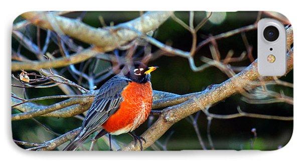 Little Bird Phone Case by Carolyn Ricks