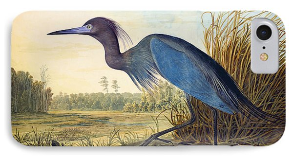 Little Blue Heron Phone Case by Celestial Images