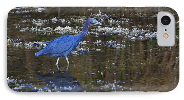 IPhone Case featuring the photograph Little Blue Heron by Gary Hall
