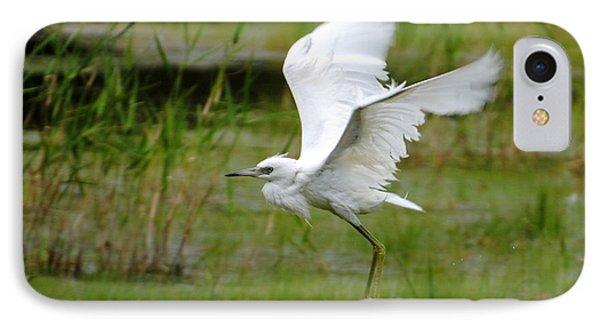 Little Blue Heron In Flight IPhone Case