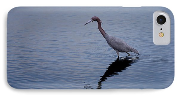 IPhone Case featuring the photograph Little Blue Heron On The Hunt by John M Bailey
