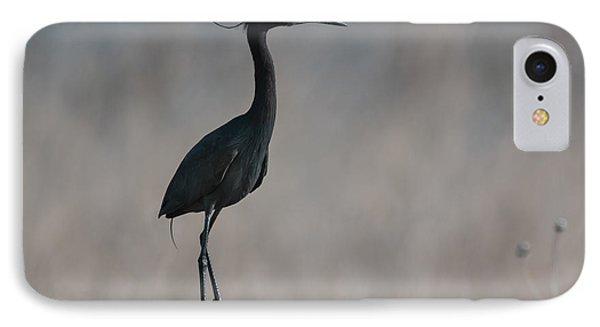 Little Blue Heron Portrait Phone Case by Robert Frederick