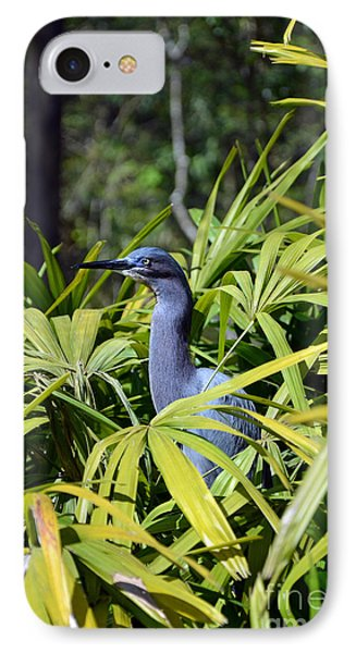 IPhone Case featuring the photograph Little Blue Heron by Robert Meanor