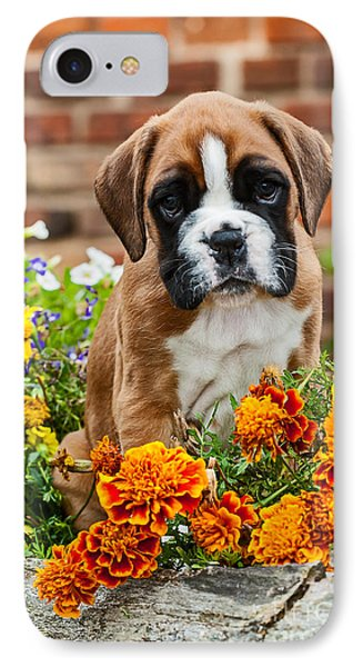 little Boxer Puppy in flowers Phone Case by Doreen Zorn