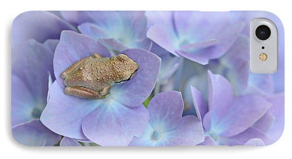 Little Brown Frog On Hydrangea Flower  IPhone Case by Jennie Marie Schell