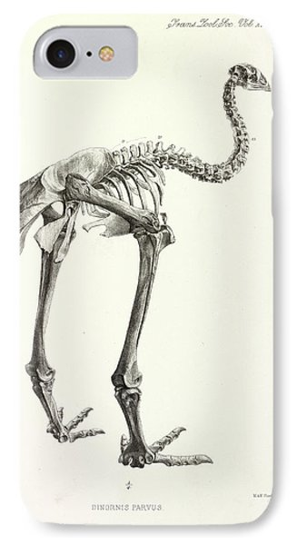 Little Bush Moa IPhone Case by Natural History Museum, London