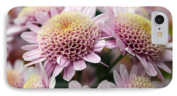 Little Button Mums IPhone Case by Mary Haber