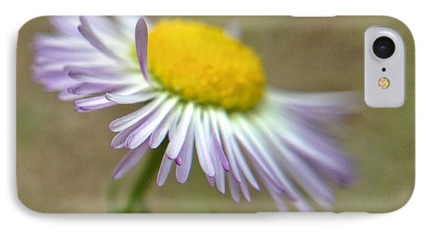 IPhone Case featuring the photograph Little Daisy by Kevin Bergen