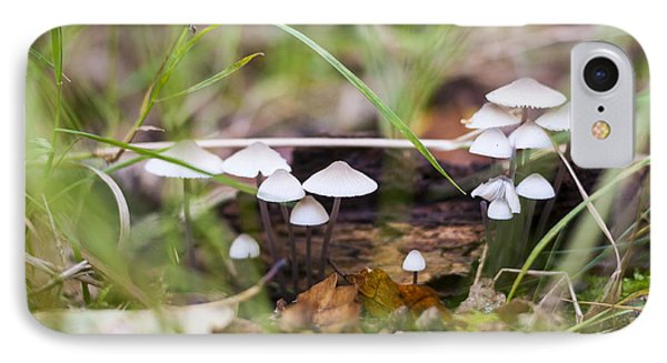 Little Fungi IPhone Case by David Isaacson