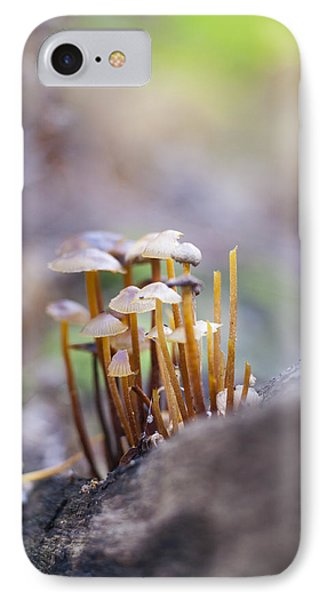 Little Fungi World IPhone Case by David Isaacson