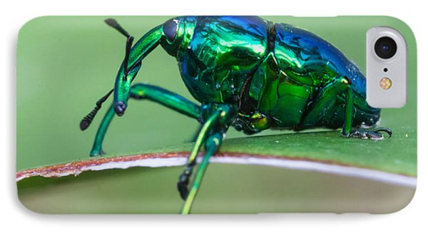 Little Green Weevil Phone Case by Craig Lapsley