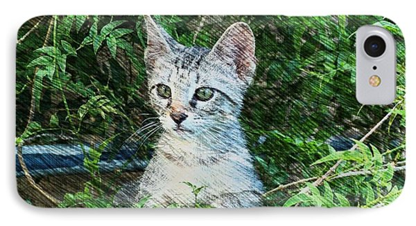 IPhone Case featuring the photograph Little Kitten by Kathy Churchman