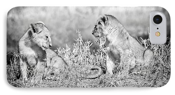 Little Lion Cub Brothers IPhone Case by Adam Romanowicz