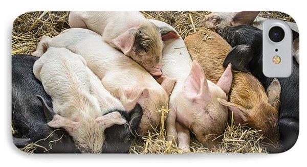 Little Piggies IPhone Case