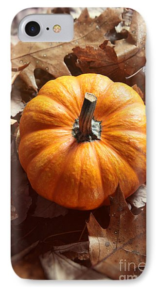 Little Pumpkin In A Bunch Of Leaves IPhone Case by Sandra Cunningham