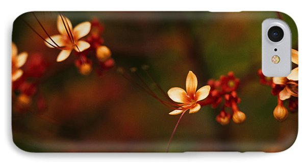 Little Red Flowers IPhone Case by Bradley R Youngberg