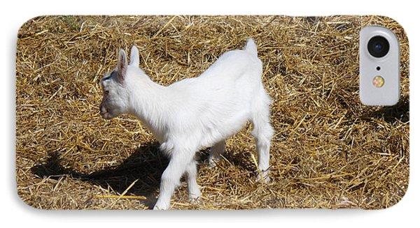 Little White Goat Phone Case by Carolyn Ricks
