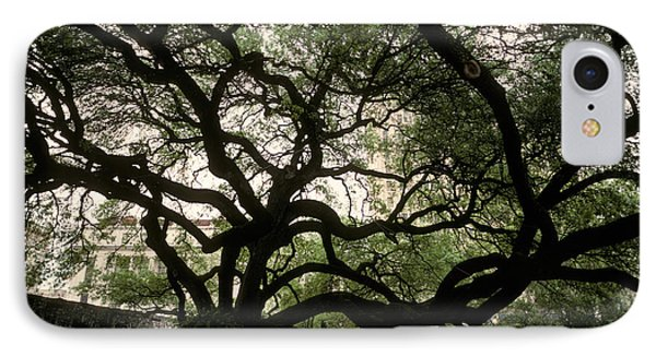 Live Oak At The Alamo, Texas IPhone Case by Ron Sanford