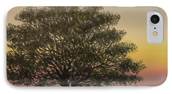 Live Oak - Farm Fields Near Tabor City Nc IPhone Case by Kathleen McDermott
