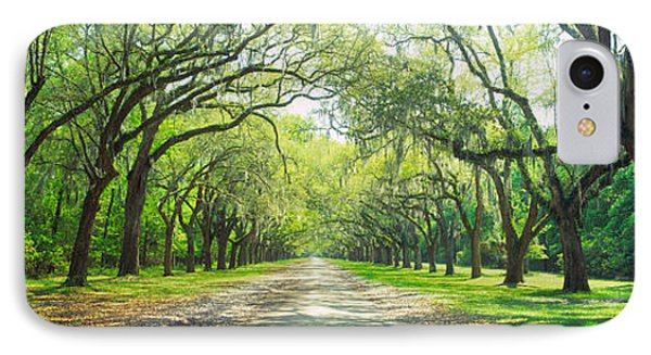 Live Oaks And Spanish Moss Wormsloe IPhone Case by Panoramic Images