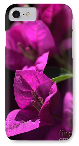Living With Bougainvillea Phone Case by Joy Watson