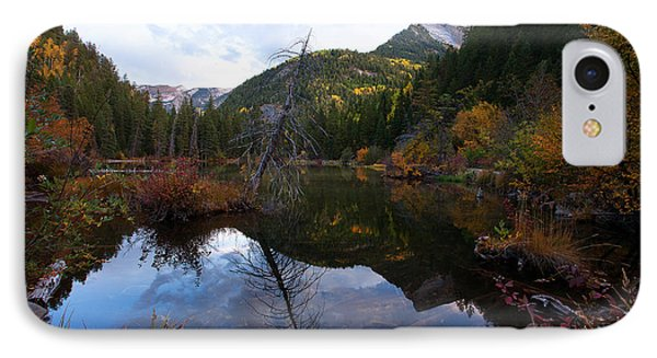 IPhone Case featuring the photograph Lizard Lake by Jim Garrison