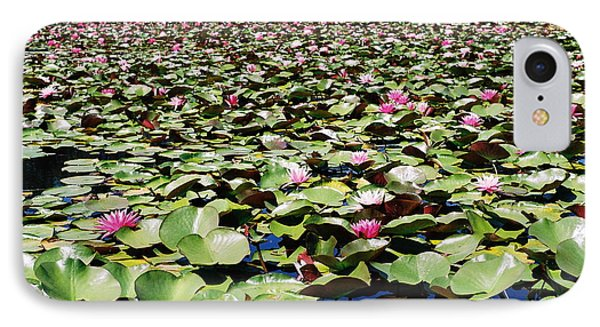 IPhone Case featuring the photograph Loads Of Lilies by Cathie Douglas