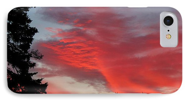 Lobster Sky Phone Case by Barbara Griffin