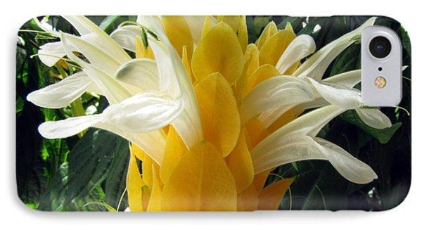 Lolliepop Plant IPhone Case by Jennifer Wheatley Wolf